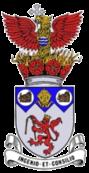 Irlam_F_C__logo