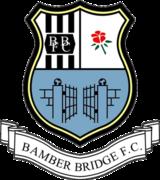 Bamberbridgefc (2)