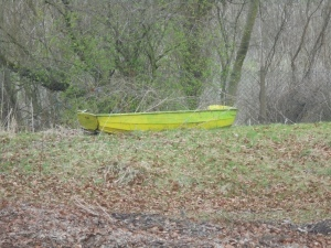 Random boat